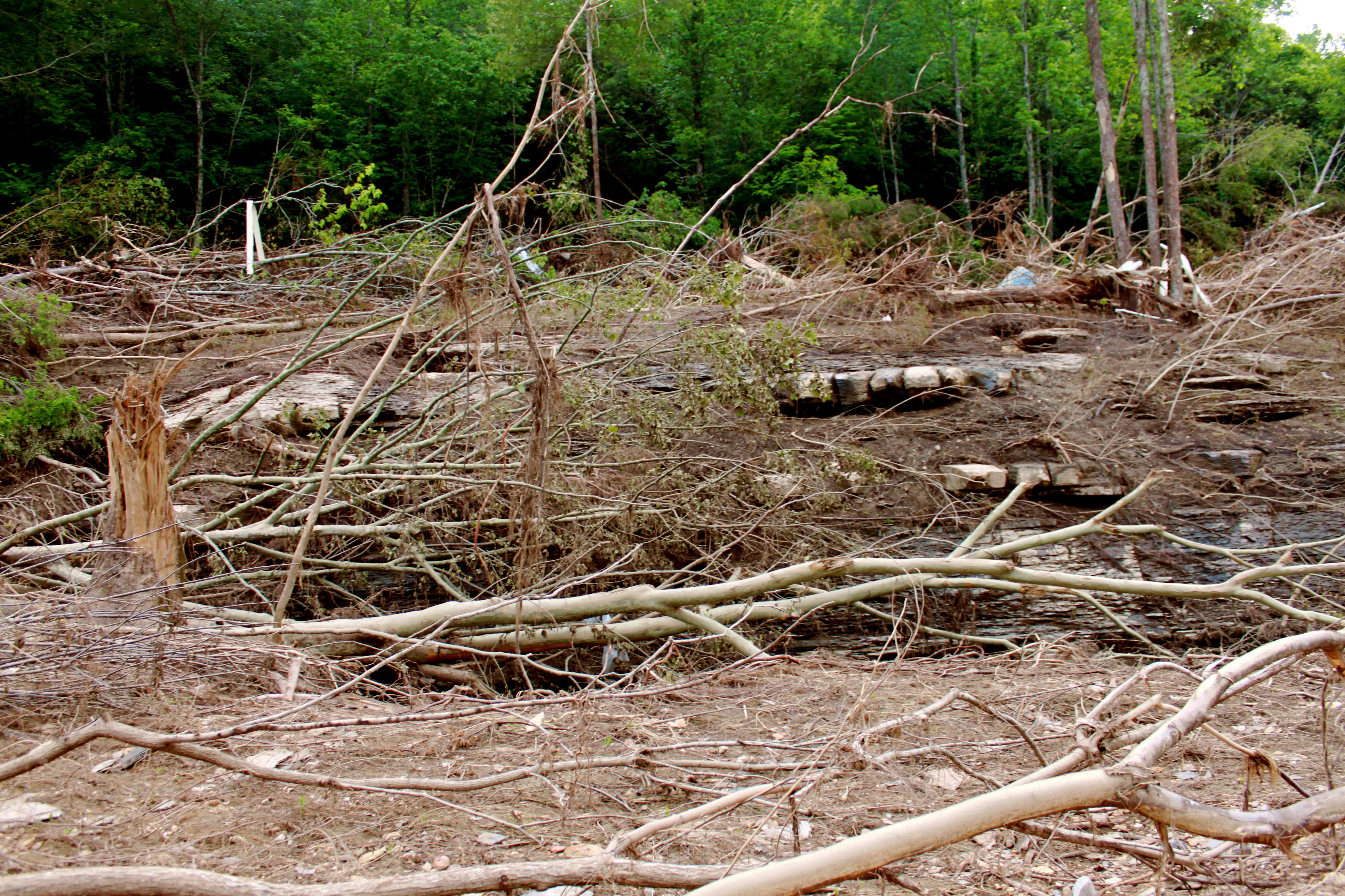 natural devastation Devastation definition: 1 damage and destruction: 2 feeling very shocked or upset:  learn more.